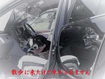 出たくない (2).jpg